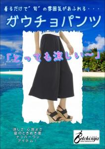 【2015.7.15】ガウチョ A3